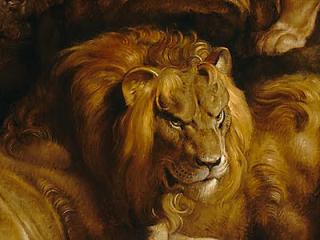 Rubens-Daniel-in-the-Lions%u2019-Den-Detail-Lion-Face