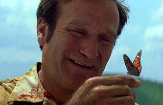 Patch-adams-robin-williams-butterfly